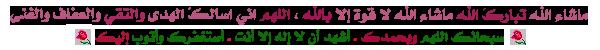 سبحان الله وبحمده عدد خلقه ورضا نفسه وزنة عرشه ومداد كلماته